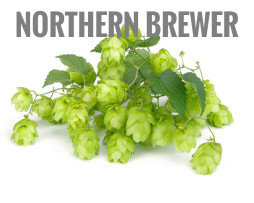 Northern Brewer hmelj